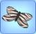 ButterflyZebra.jpg