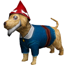 File:CanineMagicGnome.png