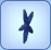 Linckia Starfish