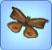 ButterflyMoth.jpg