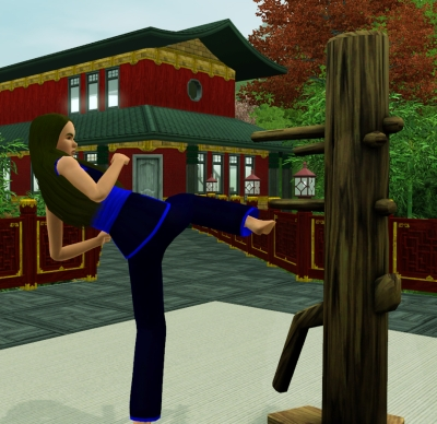 mod the sims game help sims 3 skills martial arts. Black Bedroom Furniture Sets. Home Design Ideas