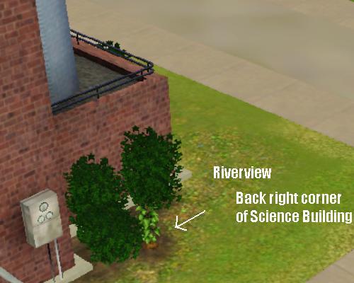 Omni Riverview.jpg