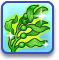 Lt rewards mermadic kelp.png