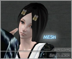 Zuiwoliuyun-hairmesh-01.jpg