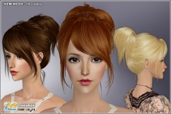 Hairmesh04341.jpg