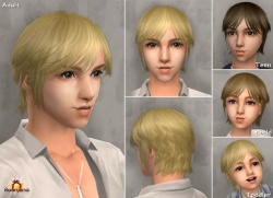 Raonsims M PayHair 02.jpg