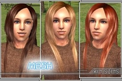 XMSims M 07.jpg