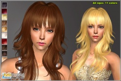 Hairmesh04565.jpg