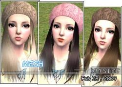 Sue-xms mesh hair20090207.jpg