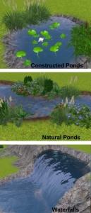 Ponds&Waterfalls.jpg