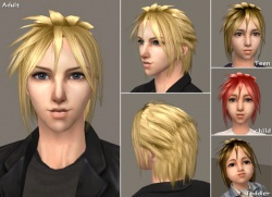 Raonsims M FreeHair 06.jpg