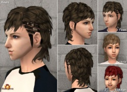 Raonsims M PayHair 04.jpg