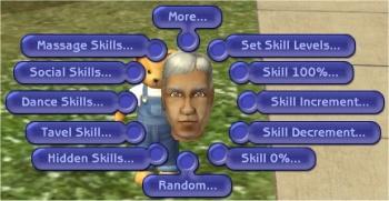 Insim-skills.jpg