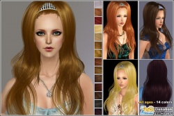 Hairmesh04543.jpg