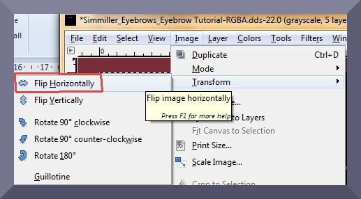 GIMP Flip horizontally.jpg